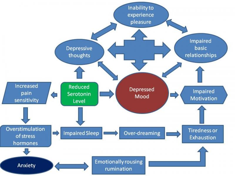 depression_cycle2
