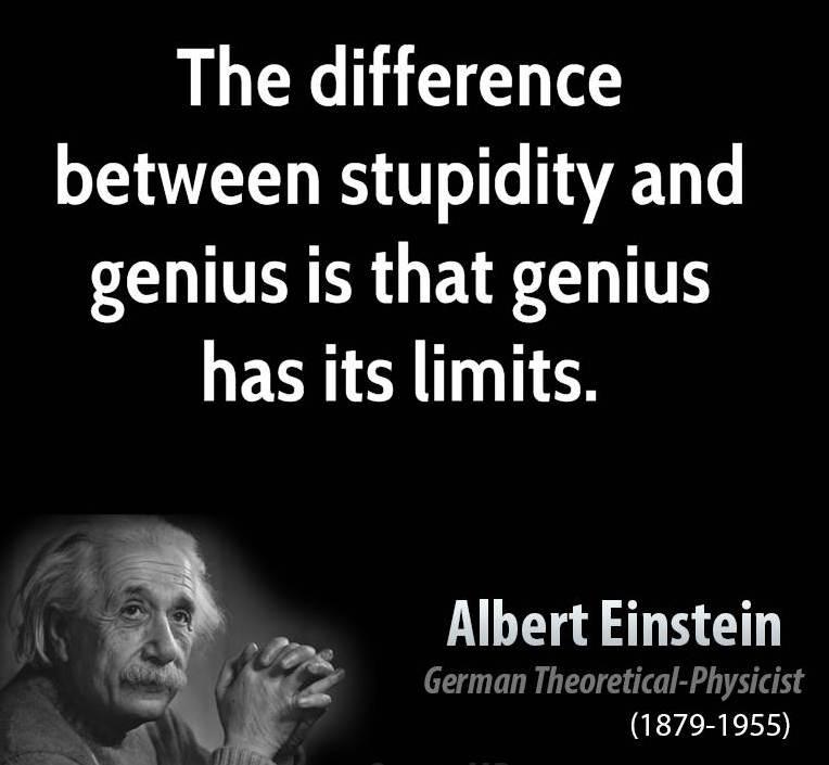 stupidity-3