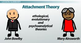 افراد تاثیر گذار در نظریه دلبستگی