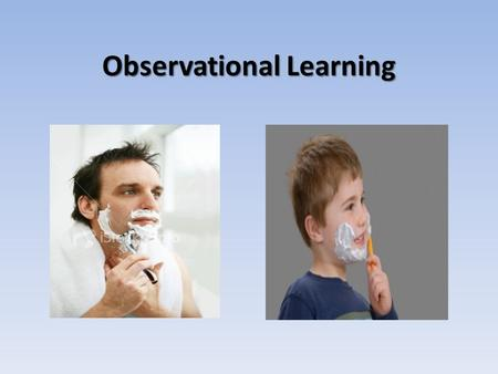 observational-learning-2