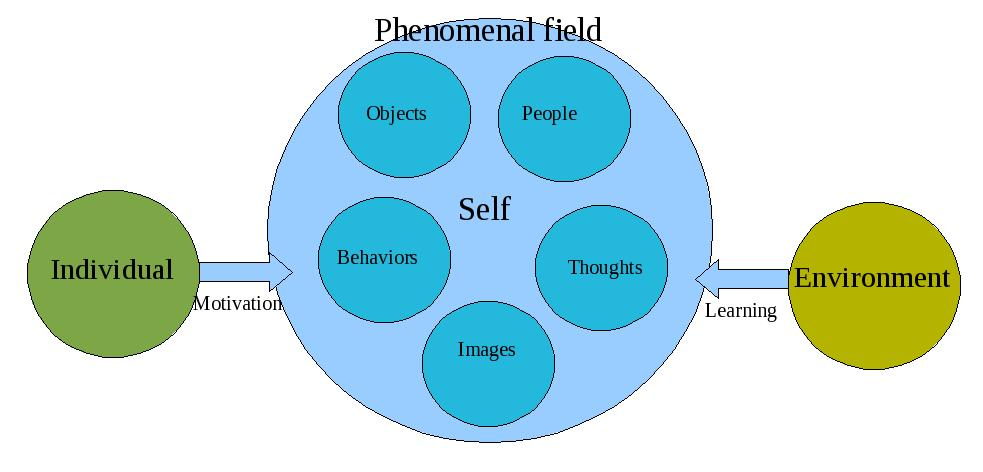 phenomenal_field