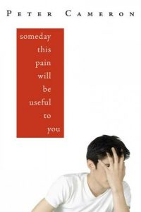 someday-this-pain-will-be-useful-to-you-book